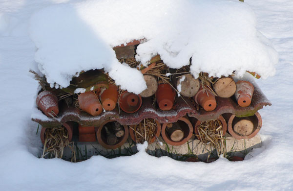 An insect house providing welcome warmth