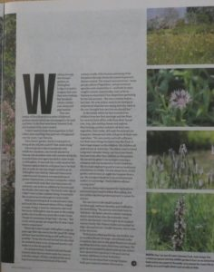 Yorkshire Post article