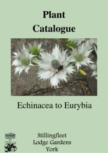 Echinacea to Eurybia listing