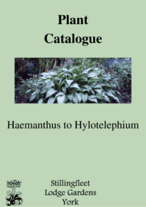 Haemanthus to Hylotelephium listing
