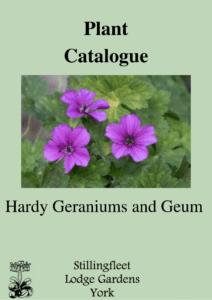 Hardy Geraniums and Geum listing