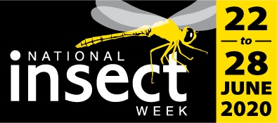 National insect Week 2020 Logo