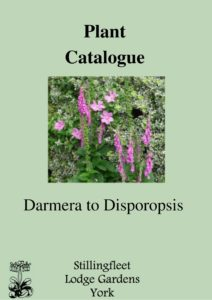 Darmera to Disporopsis listing