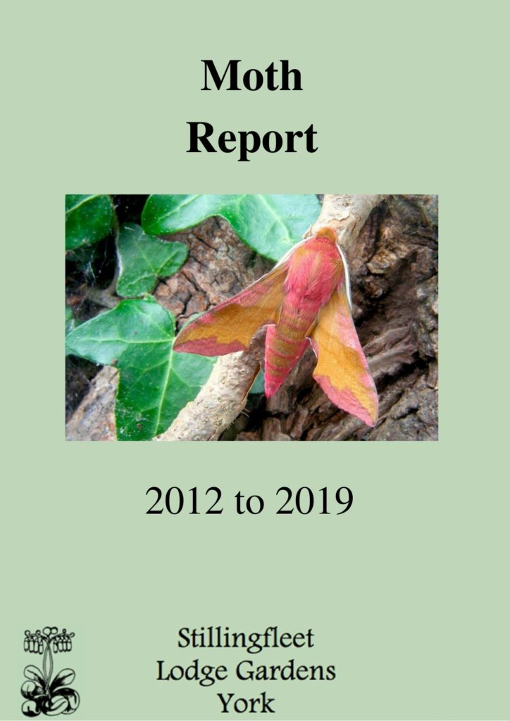 moth report